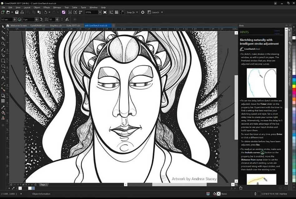CorelDRAW Graphics Suite 2017 Crack