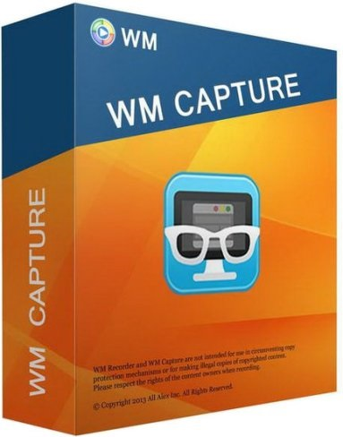 WM Capture Crack