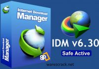 Internet Download Manager 6.30 Crack